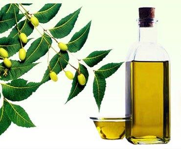 Масло Ним /Маргозы  (Azadirachta indica)