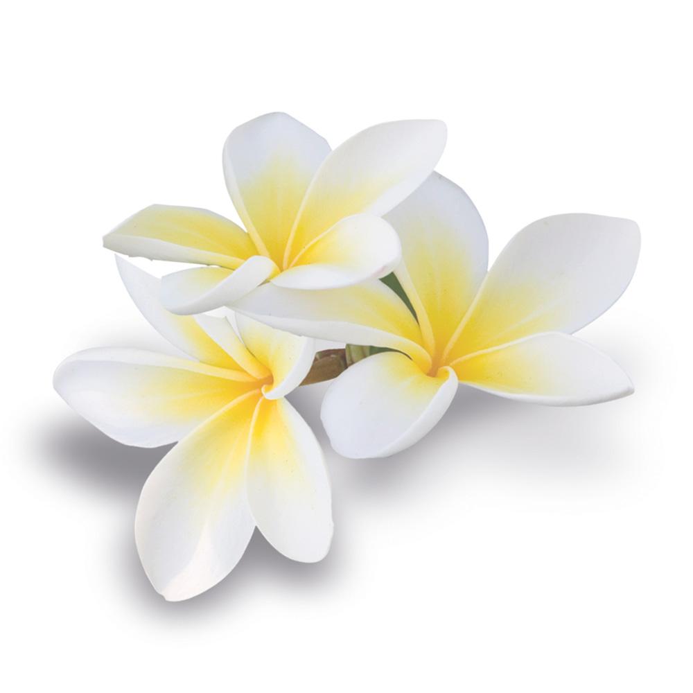 Мацерат Моной (масляный экстракт)/Macerat Gardenia Taitensis