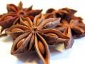 Эфирное масло аниса  (Pimpinella anisum)