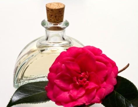 Масло камелии (сасанквы) (Camellia Sinensis)