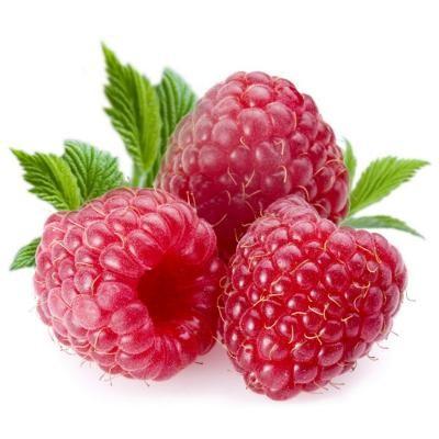 Bio-Viktorika Масло семян малины (Rubus Idaeus  Seed Oil)