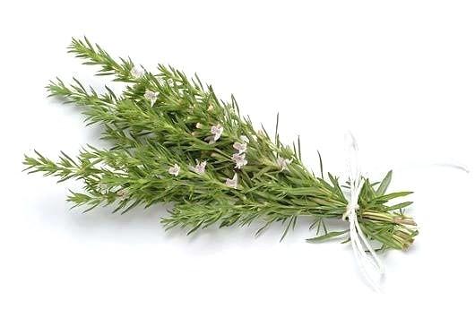 Гидролат Чабера горного/Sarriette de Provence