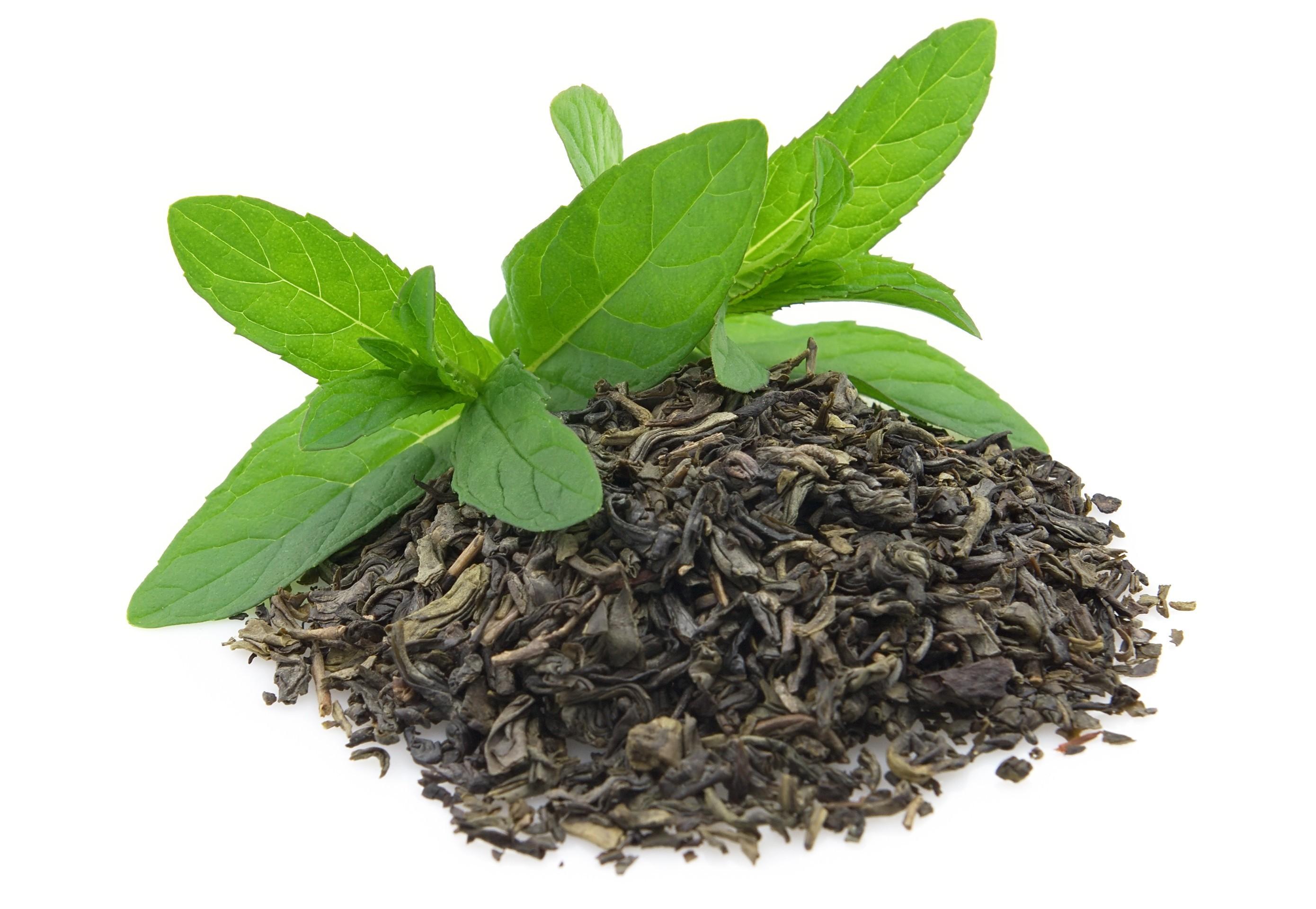 Гидролат зеленого чая/Camelia sinensis (Украина)