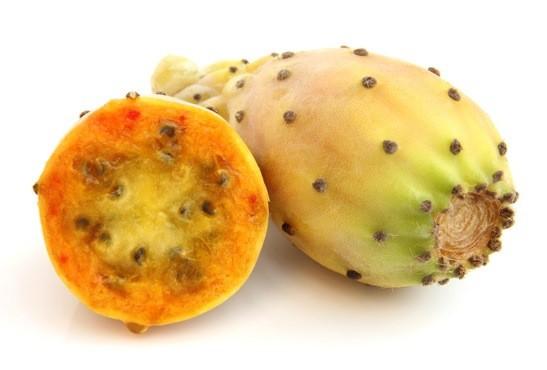 Мацерат опунции  (масляный экстракт)/Macerat Opuntia tuna